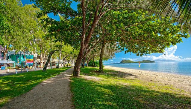Tourism Palm Cove