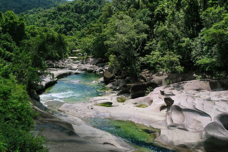 Wooroonooran Rain Forest Full-Day Safari in German