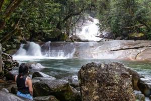 Wooroonooran Rain Forest Full-Day Safari
