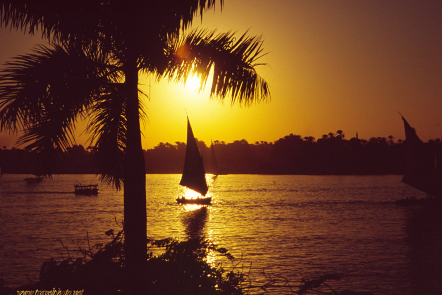1-Hour Felucca Ride on the Nile