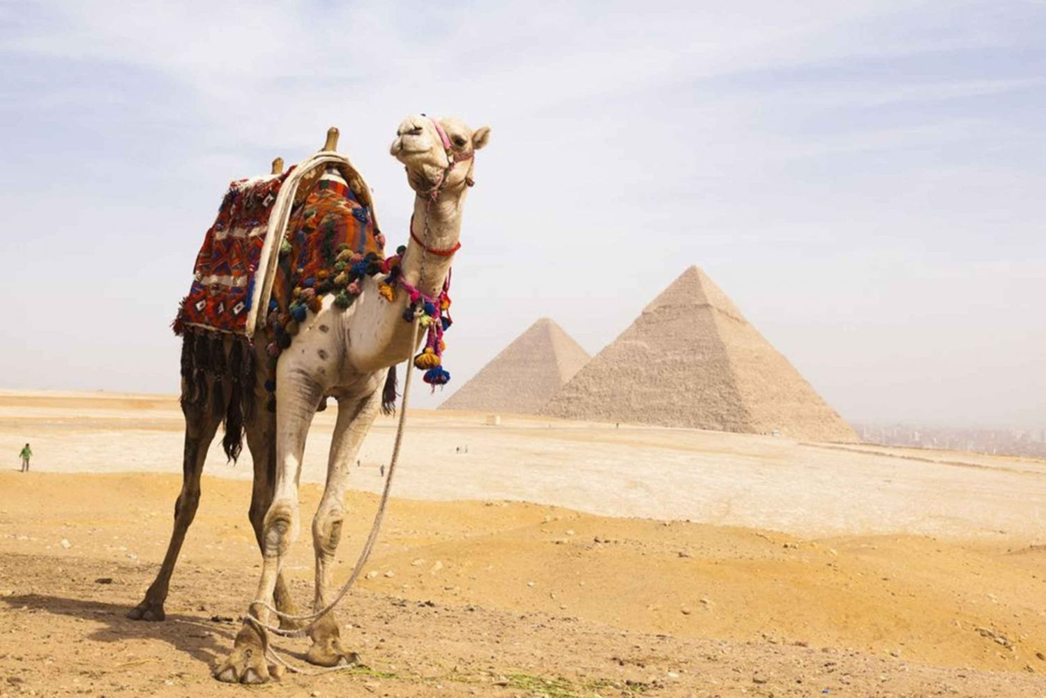 Cairo Full-Day Bus Tour from Hurghada