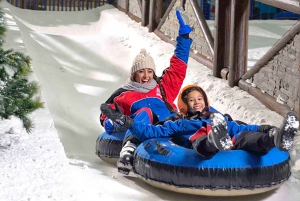Cairo: Indoor Snowboarding Tickets with Hotel Transfer