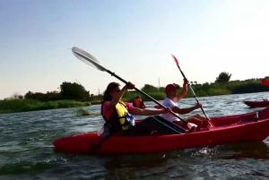 Cairo: Kayaking on the River Nile