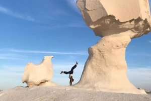 Desert and Bahariya Oasis Day Trip with Meals
