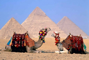 From Hurghada: Cairo and Giza Full-Day Highlights Tour