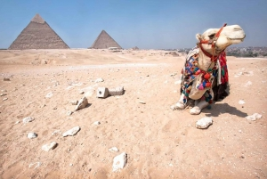 From Sharm El Sheikh: Egyptian Museum and Pyramids Day Trip