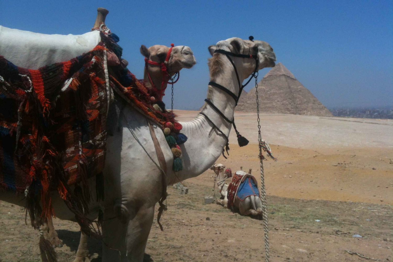 Great Pyramids of Giza Half-Day Adventure