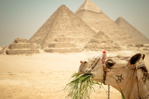 Pyramid Tour, Boat Ride and Lunch at Cafelucca