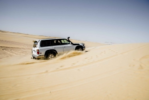 Wadi El Hitan Desert Safari, Camel Ride and BBQ Lunch