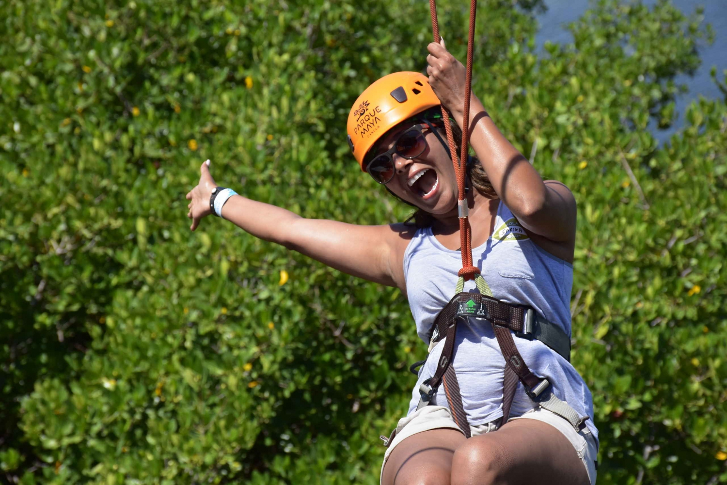 Cancun Island: Zip Line and Mangrove Tour