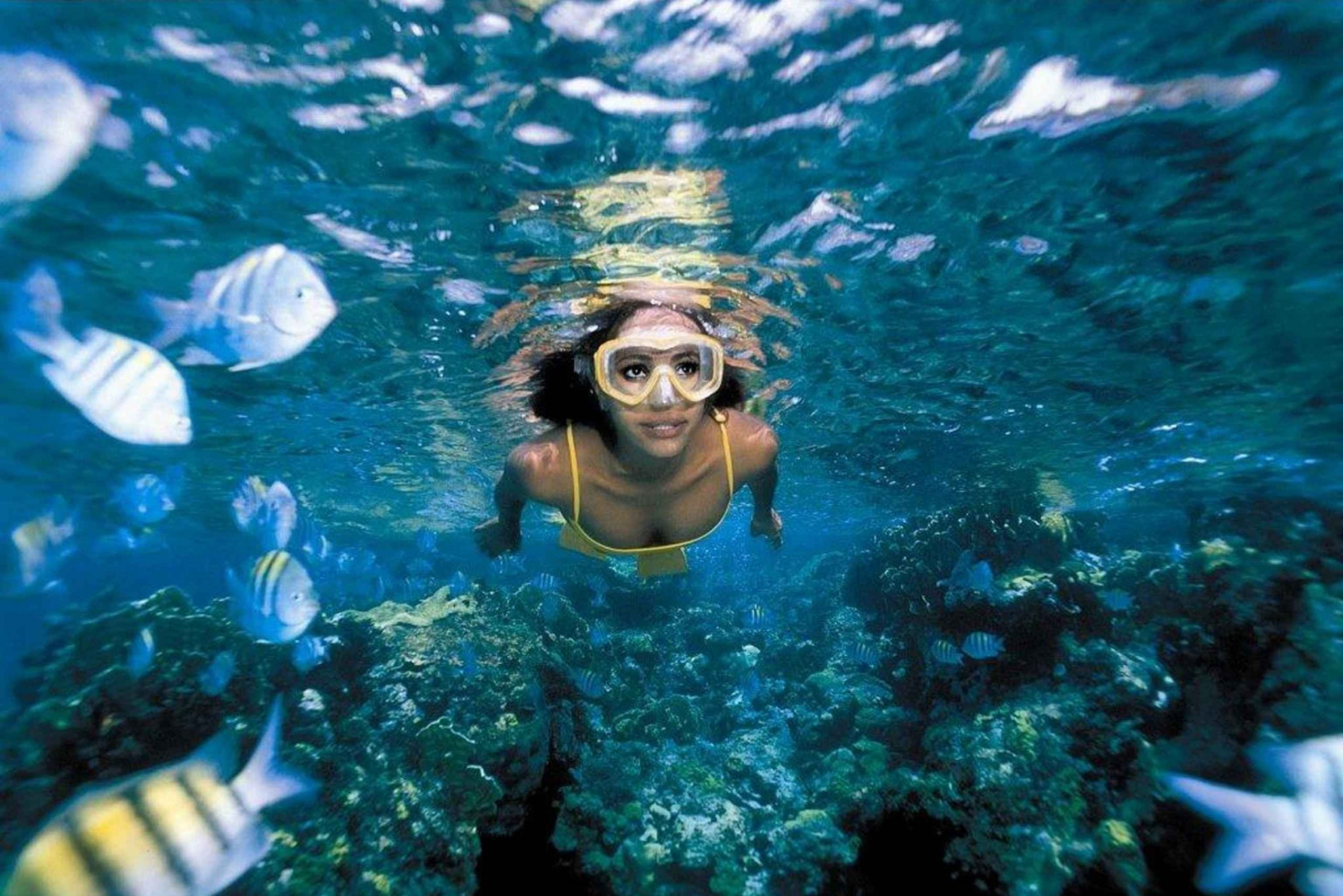 Garrafon VIP at Isla Mujeres: Full-Day Trip from Cancun