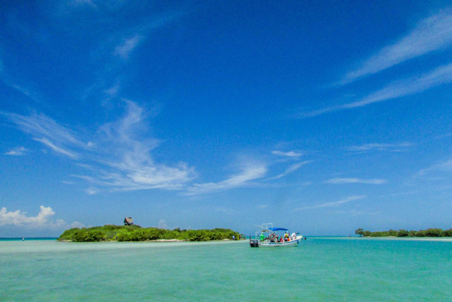 Holbox Island Tour with Transfer Options