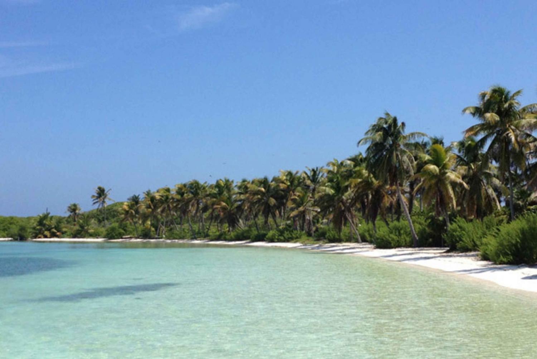 Isla Contoy and Isla Mujeres: Paradise Islands Combo Tour