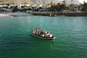 1.5-Hour Sunset Boat Tour with Gin Tasting