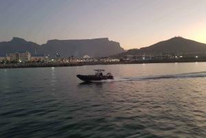 1-Hour Sunrise Ocean Safari