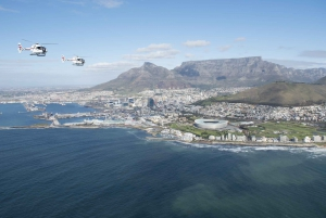 12-Minute Scenic Helicopter Tour
