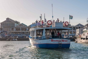 30 Minute Harbour Boat Cruise with Seal Watching
