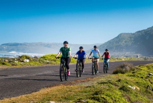 9-hour Cape Point Private Guided Cycling Tour
