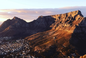 Cape of Good Hope Full-Day Private Tour