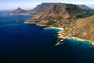 Cape Peninsula and Winelands Full Day Combo Tour