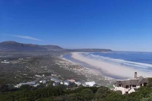 Cape Peninsula & Boulders Beach Private Day Tour