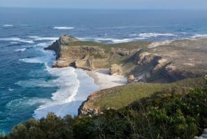 Cape Peninsula: Full-Day Small Group Tour with Penguins
