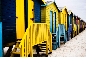Cape Peninsula: Private Full-Day Tour from Cape Town