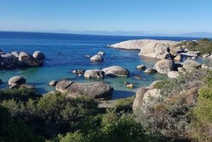 Cape Point Electric-Bike Adventure