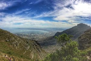 Cape Town: 2-Hour Table Mountain Hike via Platteklip Gorge
