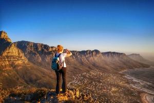 Cape Town: 3-Hour Lion's Head Sunset Hike