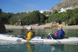 Cape Town: 9-hour Cape Point Private Guided Cycling Tour