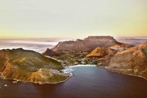 Cape Town: Cape Peninsula Private Half-Day Tour