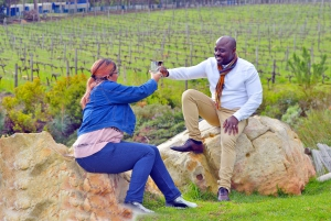 Cape Town: Cape Winelands Full-Day Shared Tour