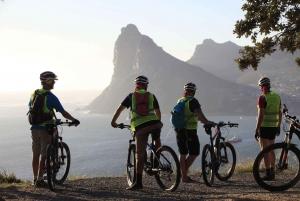 Cape Town: Chapmans Peak Coastal Ebike Tour