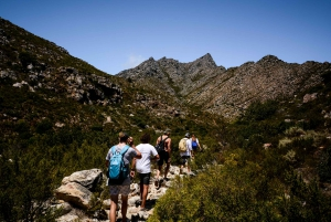 Cape Town: Crystal Pools Hiking & Rock Jump Experience
