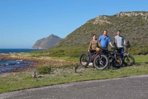 Cape Town: E-Bike Cape Peninsula Tour