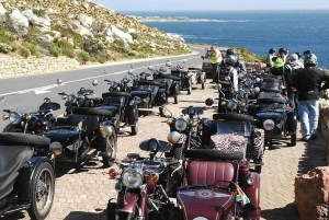Cape Town: Full-Day Cape Peninsula Tour on a Sidecar