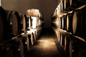 Cape Town Full-Day Winelands Tour