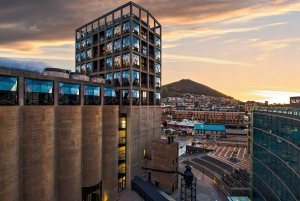 Cape Town: Guided Contemporary Art Experience