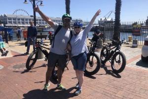 Cape Town: Half-Day e-Bike City Tour