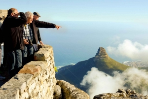 Cape Town: Half-Day Table Mountain and City Tour