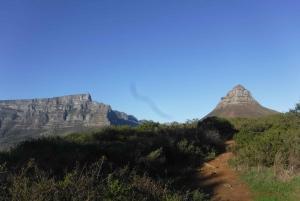 Cape Town: Lion's Head and Signal Hill Morning Trail Run