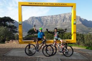 Cape Town: Mountain Bike Table Mountain to Constantia Loop