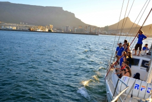 Cape Town: Pre-Sunset Champagne Cruise