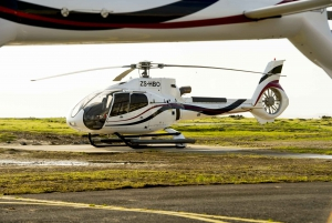 Cape Town: Scenic Helicopter Flight