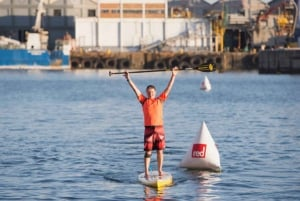 Cape Town: Stand-up Paddleboard Experience