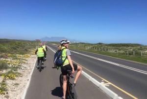 Cape Town: Table Bay Coastal E-bike Tour