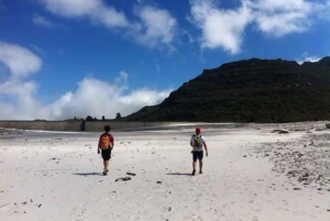 Cape Town: Table Mountain Kirstenbosch to Cable Station Hike
