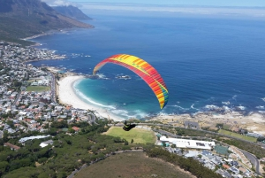 Cape Town: Tandem Paragliding Experience