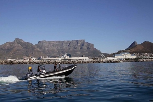 Cape Town: V&A Waterfront Adventure Boat Ride
